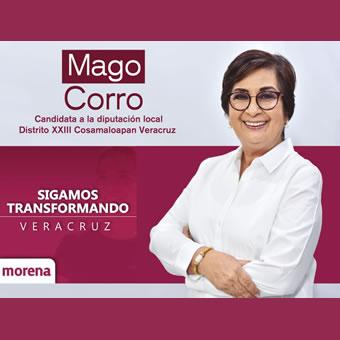 Margarita Corro  Candidata a Diputada Local Distrito XXIII de Cosamaloapan